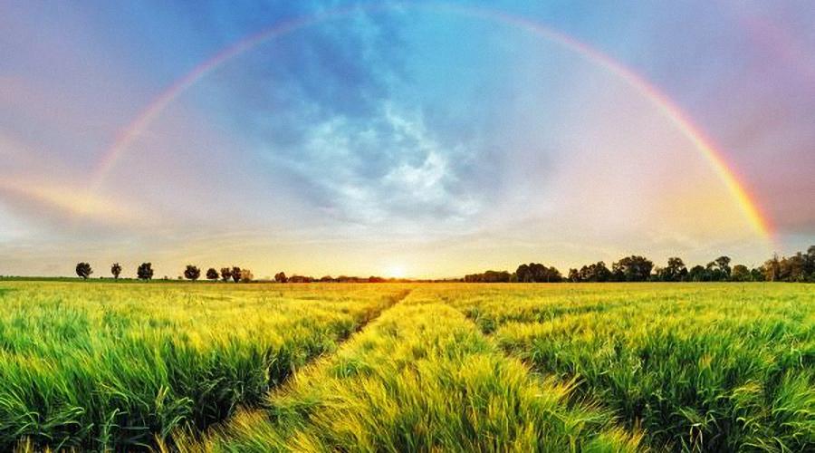 ..über dem Regenbogen..